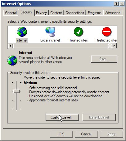 Internet Explorer: security settings